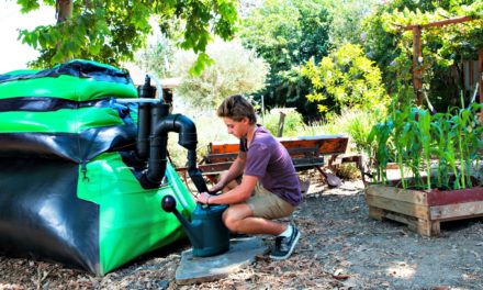 How The HomeBiogas 2.0 Turns Grapes Into Gas