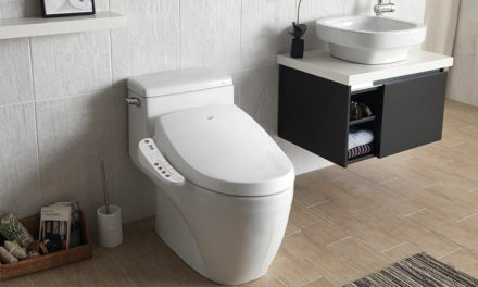 Bio Bidet Rocks, No Butt's About It
