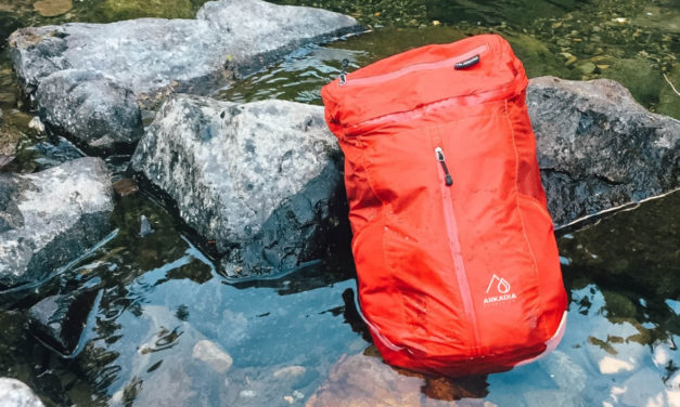 The Alta 21 – A DAMN good bag at an even better price [Video]